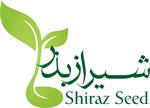 شیراز بذر
